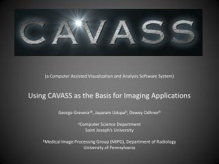 CAVASS contributors