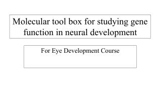 Molecular tool box for studying gene function in neural development