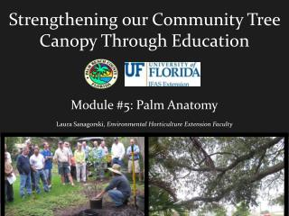 Strengthening our Community Tree Canopy Through Education Module #5: Palm Anatomy