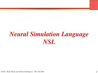 Neural Simulation Language NSL
