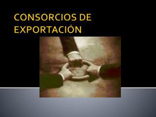 CONSORCIOS DE EXPORTACIÓN
