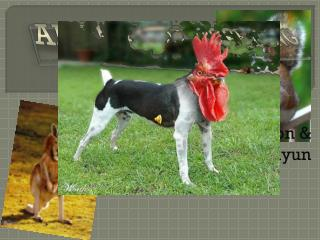 Ar tificial  Breeding