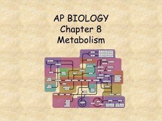 Chapter  8.   Metabolism  Enzymes