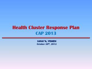 Health Cluster Response Plan CAP 2013