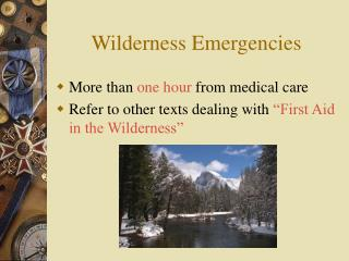 Wilderness Emergencies