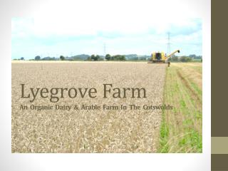 Lyegrove Farm An  Organic  Dairy  &  Arable  Farm  In  The  Cotswolds