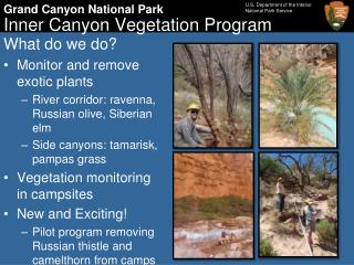 Inner Canyon Vegetation Program