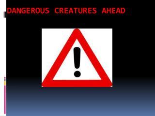 Dangerous creatures ahead