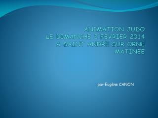 ANIMATION JUDO  LE DIMANCHE 2 FEVRIER 2014 A SAINT ANDRE SUR ORNE MATINEE