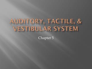Auditory, tactile, & Vestibular system