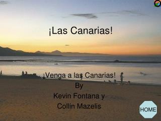 ¡Las Canarias!