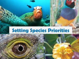 Setting Species Priorities