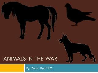 Animals in the war