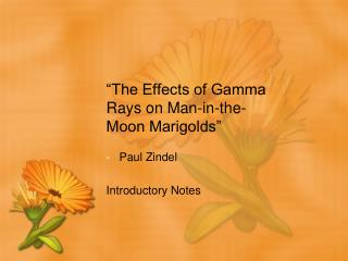 """The Effects of Gamma Rays on Man-in-the-Moon Marigolds"""