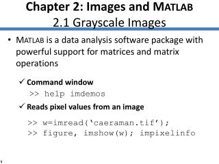 Chapter 2: Images and M ATLAB 2.1 Grayscale Images