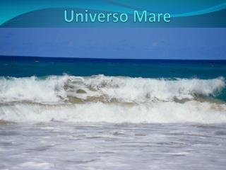 Universo Mare