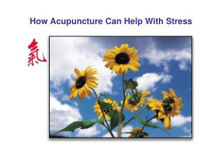 How Acupuncture Can Help With Stress