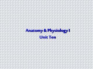 Anatomy & Physiology I Unit Ten