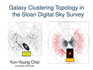 Galaxy Clustering Topology in the Sloan Digital Sky Survey