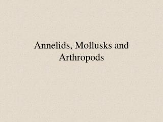 Annelids, Mollusks and Arthropods