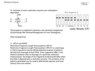 10. Activities of some restriction enzymes are methylation-dependent.              CH3