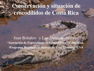 Conservaci ó n  y situación de crocodílidos de  Costa Rica