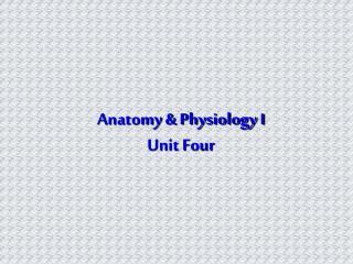 Anatomy & Physiology I Unit Four