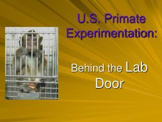 U.S. Primate  Experimentation: