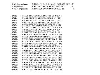1. M13 rev primer:5' TTC ACA CAG GAA ACA GCT ATG ACC    3'