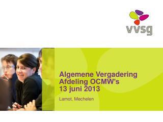 Algemene Vergadering Afdeling OCMW's 13 juni 2013