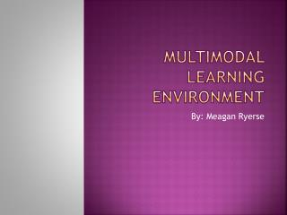 Multimodal Learning Environment
