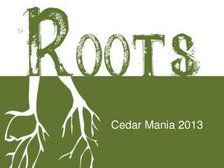 Cedar Mania 2013