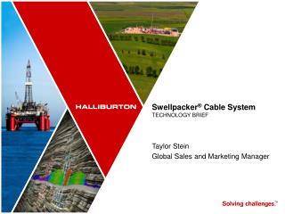 Swellpacker ®  Cable System TECHNOLOGY BRIEF