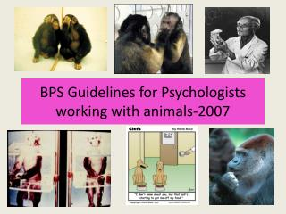 BPS Guidelines for Psychologists working with animals-2007