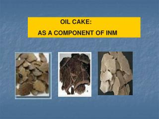 OIL CAKE:       AS A COMPONENT OF INM