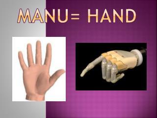 Manu=  HAnd