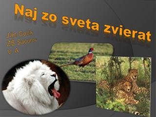 Naj z o sveta zvierat