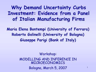 Why Demand Uncertainty Curbs Investment: Evidence from a Panel of Italian Manufacturing Firms