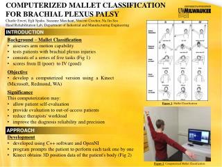 COMPUTERIZED MALLET CLASSIFICATION FOR BRACHIAL PLEXUS PALSY