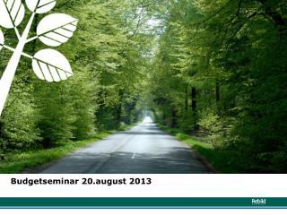 Budgetseminar  20.august 2013