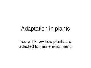 Adaptation in plants