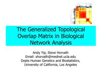 The Generalized Topological Overlap Matrix in Biological Network Analysis
