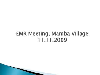 EMR Meeting, Mamba Village  11.11.2009