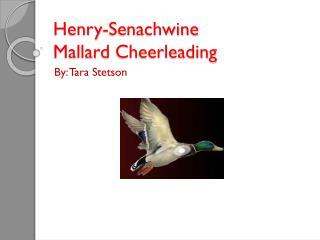 Henry- Senachwine Mallard Cheerleading