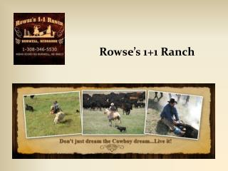 Rowse�s 1+1 Ranch