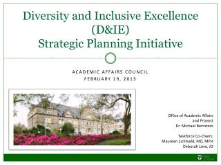 Diversity and Inclusive Excellence (D&IE) Strategic Planning Initiative