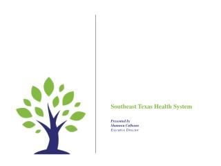 Southeast Texas Health System P resented  by Shannon Calhoun Executive Director