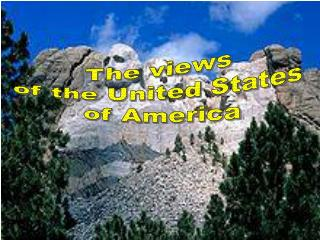 The views  of the United States  of America