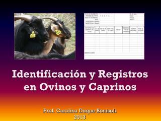 Identificación y Registros en Ovinos y Caprinos