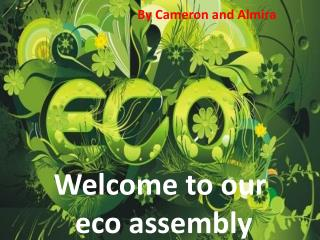 Welcome to our  eco assembly